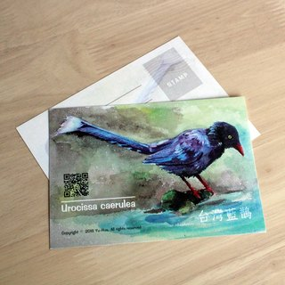 [YH x] illustration postcard - watercolor Taiwan Blue Magpie