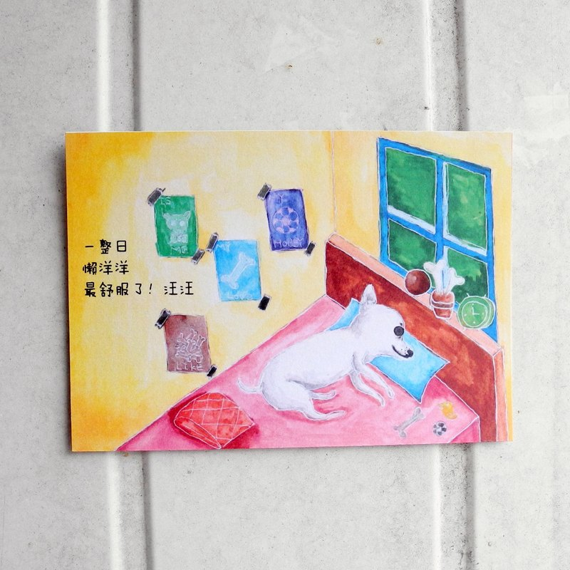 Everyday lazy most comfortable pet series postcard