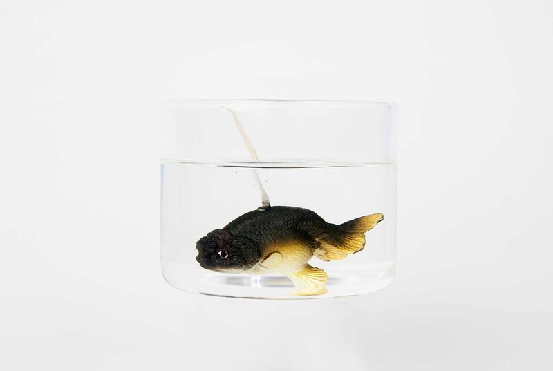 Ranchu Goldfish Candle - black 300ml