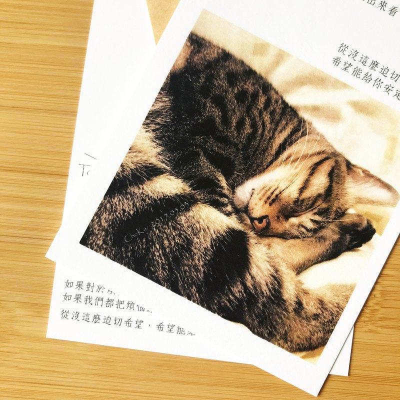 【把煩惱通通灑出來吧】新詩 詩卡/卡片/明信片 文青/療癒/貓
