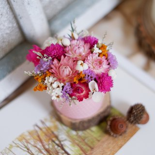 Unfinished | Pastel cake flowers dried flowers small potted flowers wedding small gifts gifts home decorations photography props office healing small objects Christmas exchange gift spot