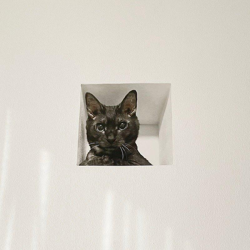 Mousou貼圖貼紙/牆上的貓(黑貓)