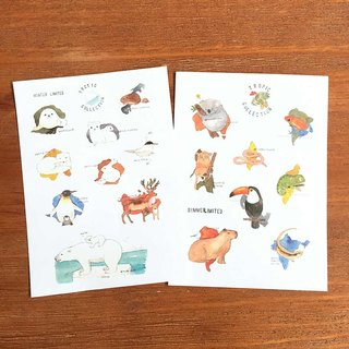 Shine Watercolor Animals Illustrated Limits and Paper Stickers - Polar and Tropical Animals