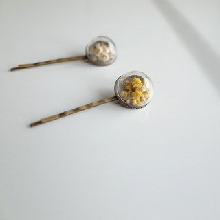 【Q-cute】 dry flower half glass ball - starlight hairpin