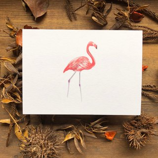 Bird and bird series flamingo postcard