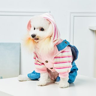 Pet clothes Two-piece hooded pants