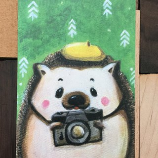 "Love taking pictures, ""Mr. Hedgehog"" 