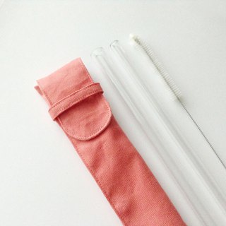 Duo Glass Straw Pouch Set/ Color: Coral/ Unfolds Entirely for Cleaning