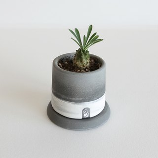 Small hole two-color cement hand potted + round base (primary / dark) does not contain plants for more meat plants / cactus planting