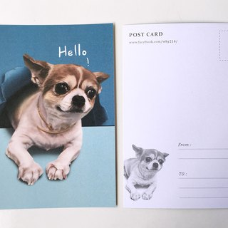 Animal illustration postcard [Chihuahua out of paper]