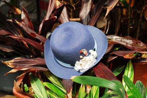 Small parrot blue floral hat curling