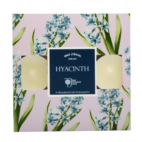 British fragrance RHS FG series hyacinth mini candle 9 into