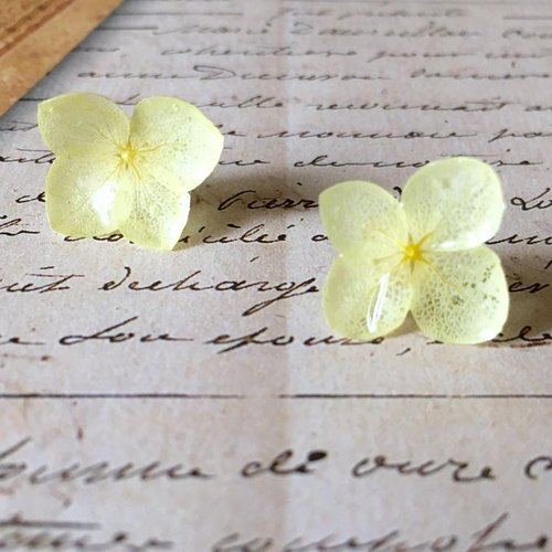 Lemon * Hibari hydrangea earrings