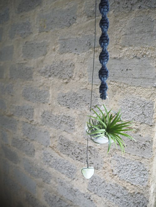[Living Landscapes • Small hand-woven glass flower Tillandsia • ball • dark blue]
