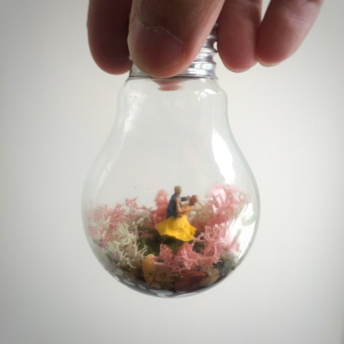 Moss bulb incandescent light bulbs into the world of micro-landscape
