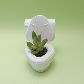 Cement pot succulent - toilet