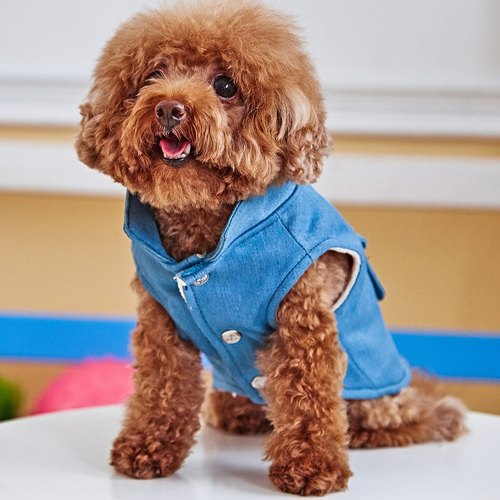 Pet clothes modeling cowboy vest