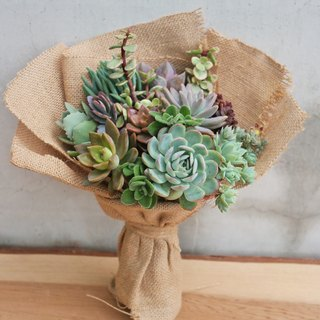 Peas Succulents and Small Groceries _ Creative Planting Series - Succulent Bouquet