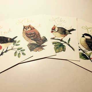 LikeBird bird postcard set