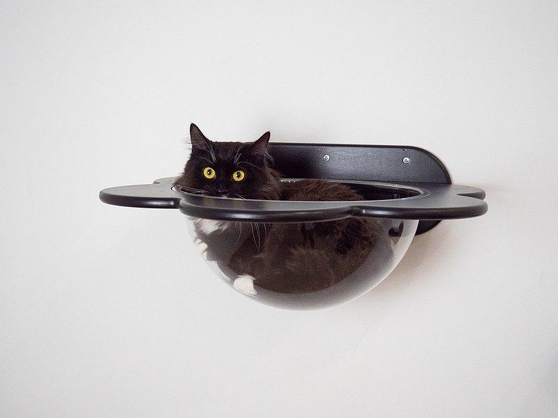 貓壁架貓家具架子黑貓家具