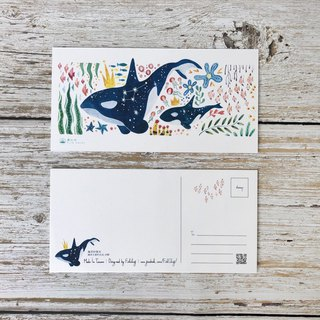 Ocean Good Friends Postcard - Killer Whale