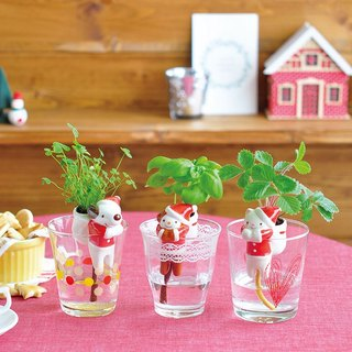 Sheng new Tao Yun Shippon series hydroponic plants 【Christmas limited edition】