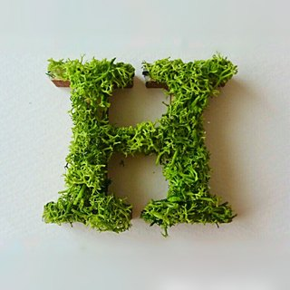 "Wooden alphabet objects (Moss) 5cm ""H"" × 1 point"