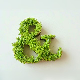 "Wooden alphabet objects (Moss) 5cm ""&"" × 1 point"