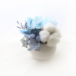 Snow elves mini table flower blue roses, white cotton dry flower ceremony