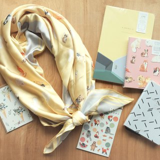 Goody Bag – Secret Scarf Bag
