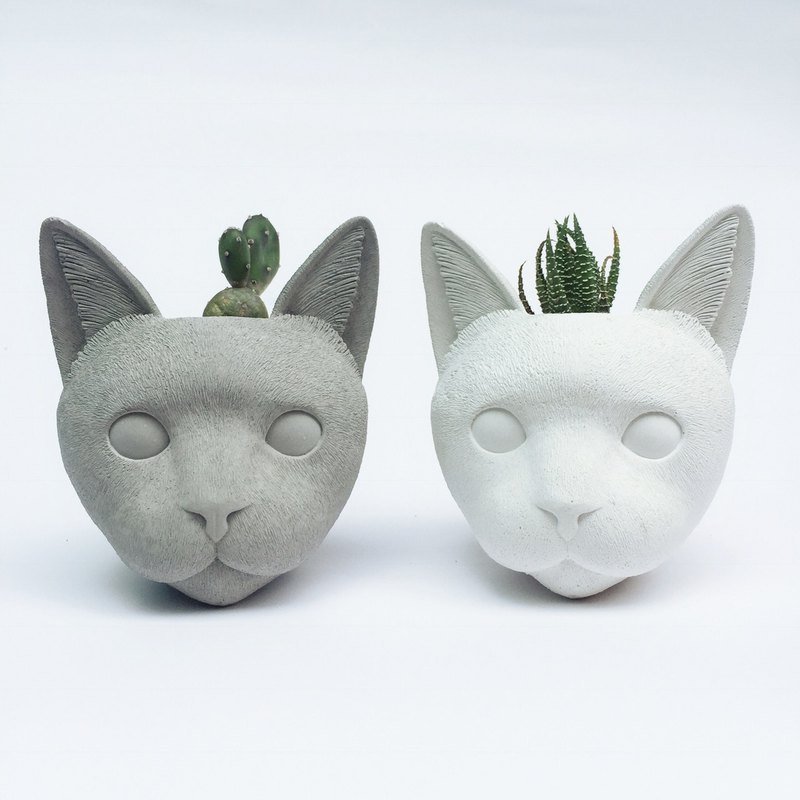 Personalized cat cement pot