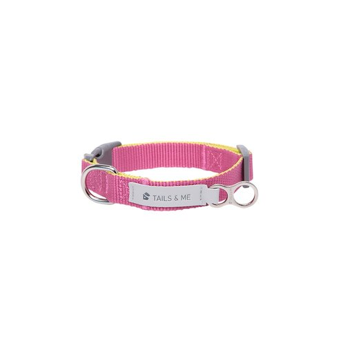 [Tail and me] Classic nylon belt collar purple red / lemon yellow M