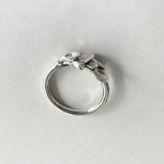 Bean grass silver ring silver 925