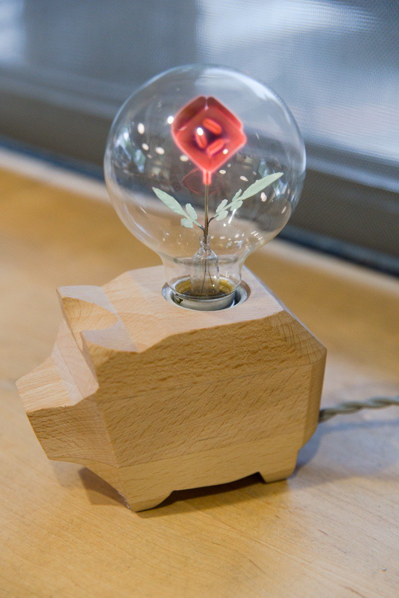- Jin Space Design - Beech Hardcore Canopy Light Group - Eternal Rose Night Light Bulb