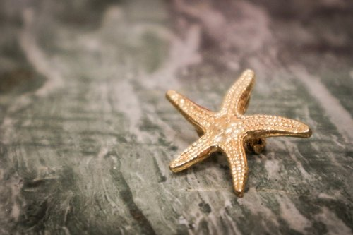 …{DOTTORI :: ACCESSORY}Sea Star Pendant