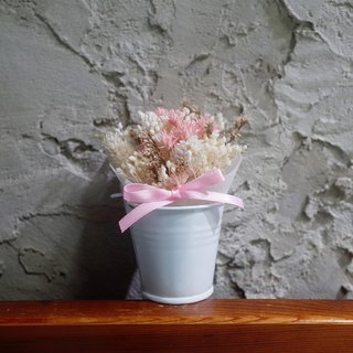 [Q-cute] Dry Flower Small Pot Series - Starlight