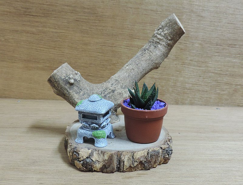 Japanese Garden Wind Succulent Plant Healing Potted Plant