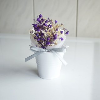[Q-cute] Dry Flower Small Pot Series - Purple Gypsophila