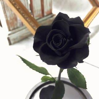 Valentine's Day eternal flower, no flower mysterious love - Black M impression FloralDesign exclusive production