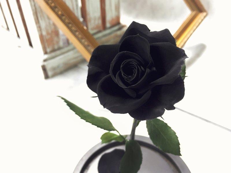 玫瑰 母親節 情人節 永生不凋花 神秘的愛-黑 M印象FloralDesign