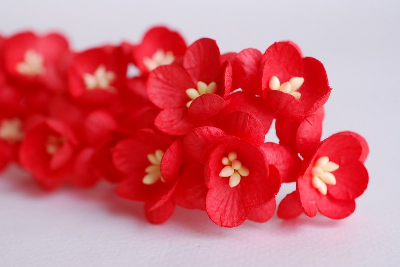 Paper flower, 50 pieces, size 2.5 cm. Cherry blossom, Sakura, red color.