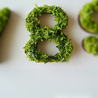 "Wooden numbers objects (Moss) 5cm ""8"" × 1 point"