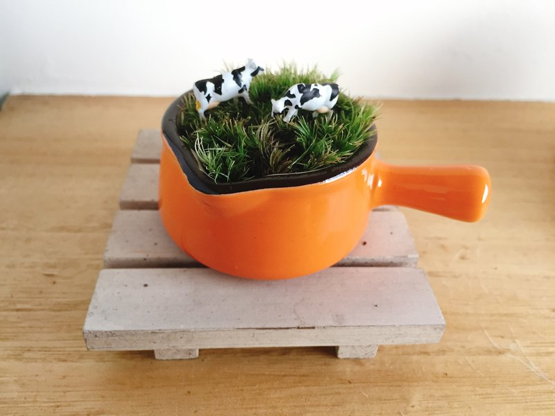Animal cow on pure natural grassland orange porcelain white wood board pot moss plant micro landscape animal micro landscape