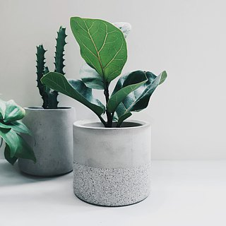 GRANITE Deep cylinder concrete planter / pot for Succulent & Cacti
