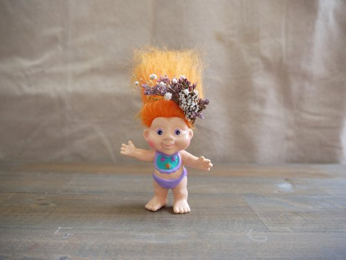 [Old plaything: lucky boy with a very mini mini] crown flower dried flower crown