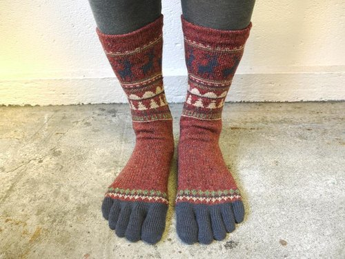 Nordic five fingers socks M size [engine]