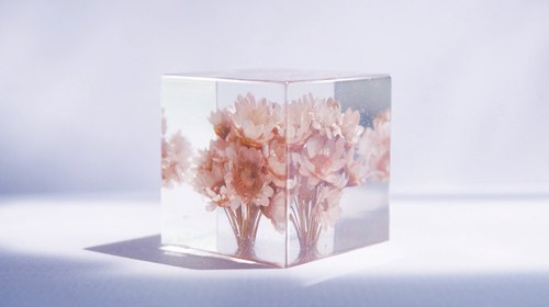 Dried flowers pale pink flowers - dried flowers decoration three-dimensional square