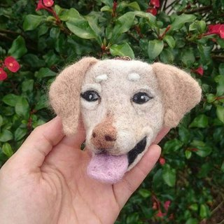 Custom pet head