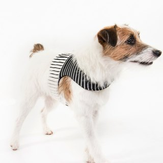 Chest Backwear + Drawstring Orange Blinks Group Start Adventure Stripe Puzzles Black and White Design XS / S / M / L