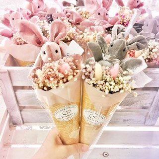 WANYI Rabbit Marshmallow Gypsophila Flower Dry Flower / No Withering / Graduation / Wedding